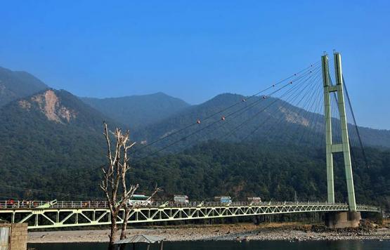 Single Pillar Bridge